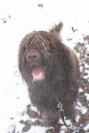 argo-las-22-01-2011-14-of-22.jpg