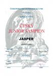 Jasper JCHCZ